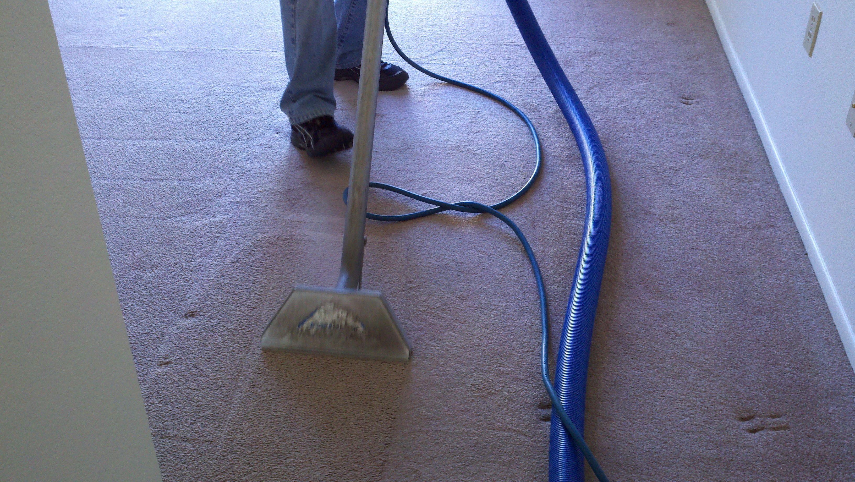 Carpet Cleaning In Salem Or Peter Herman Carpet Cleaning