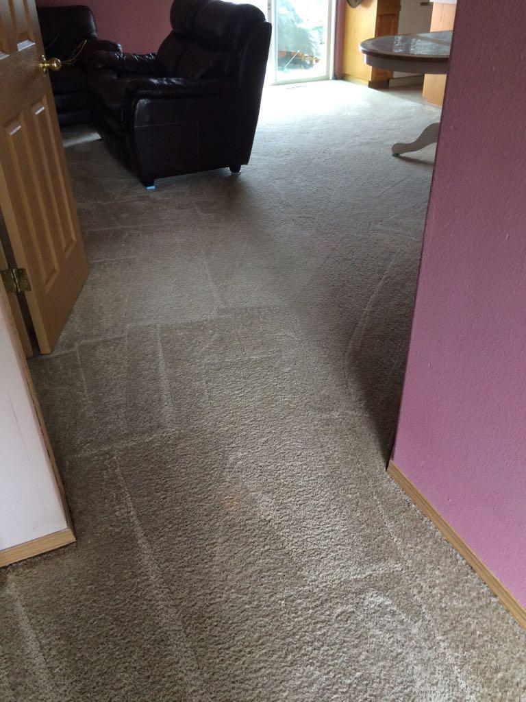 Carpet Cleaning In Salem Or Peter Herman Carpet Cleaning